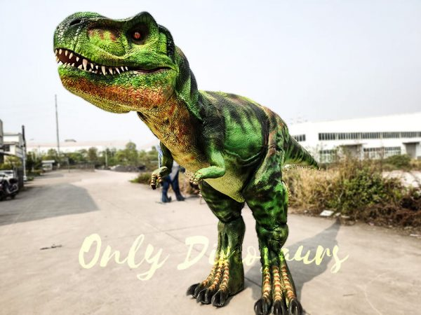 Giant T Rex Costume 6M Long 3M High3 1