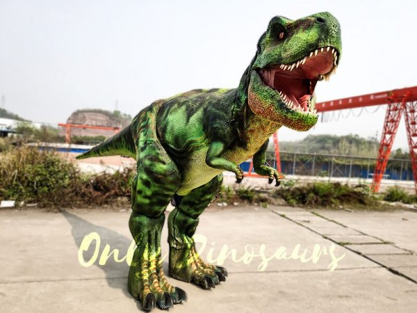 Giant T Rex Costume 6M Long 3M High4 1