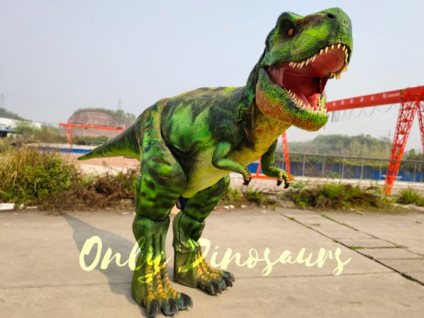 Giant-T-Rex-Costume-6M-Long-3M-High444