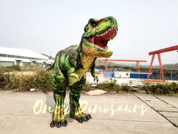 Giant T Rex Costume 6M Long 3M High6 1