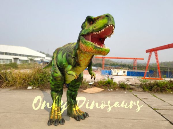 Giant-T-Rex-Costume-6M-Long-3M-High666