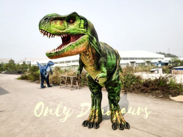 Giant T Rex Costume 6M Long 3M High7 1