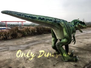 Halloween Realistic Velociraptor Costume