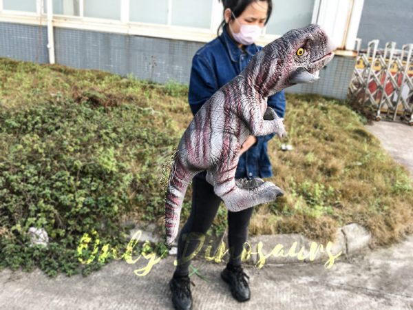 Hand Control Dinosaurs Toy Realistic Psittacosaurus Puppet2 1