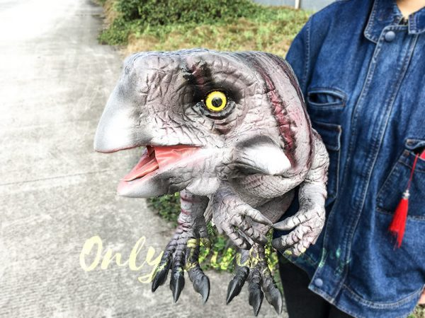Hand Control Dinosaurs Toy Realistic Psittacosaurus Puppet4 1