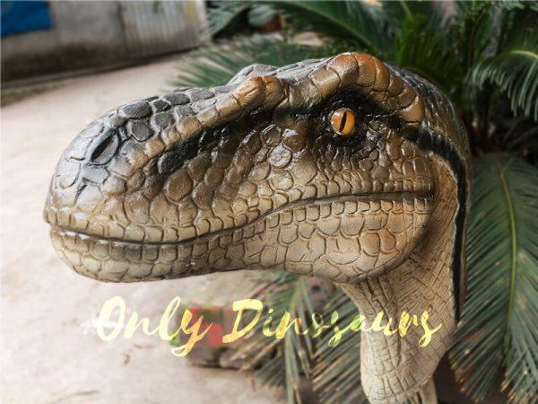 Highly Realistic Fiberglass Statues Velociraptor Head1 1