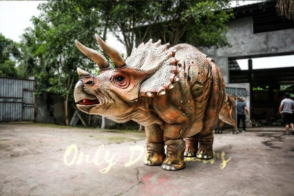 Huge Triceratops Dinosaurs Costume for Stage Show2 1