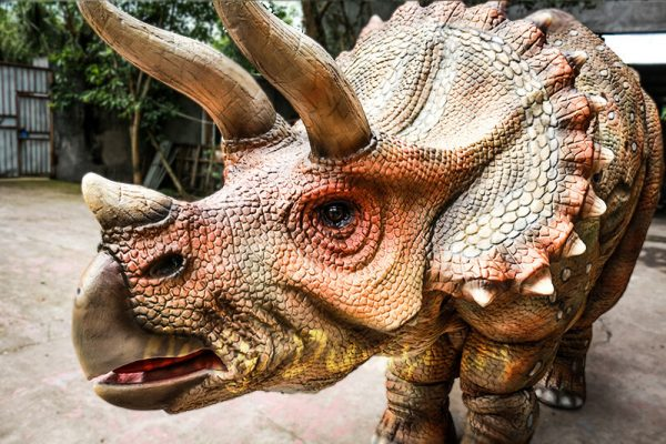 Huge Triceratops Dinosaurs Costume for Stage Show4 1