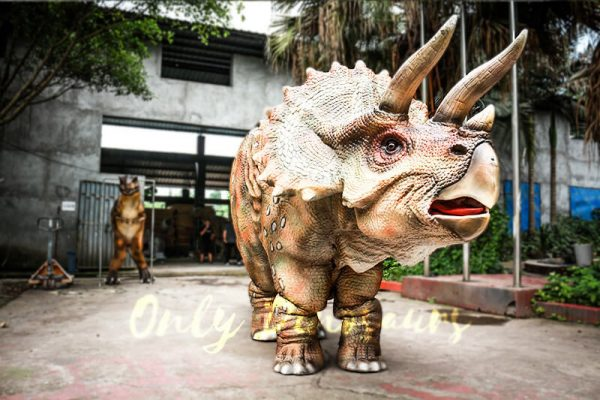 Huge Triceratops Dinosaurs Costume for Stage Show5 1