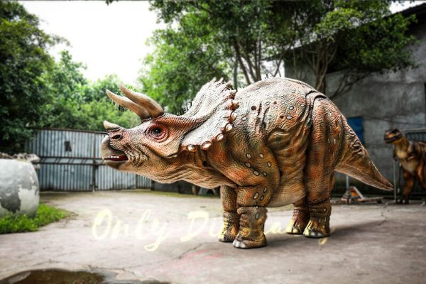 Huge Triceratops Dinosaurs Costume for Stage Show6 1