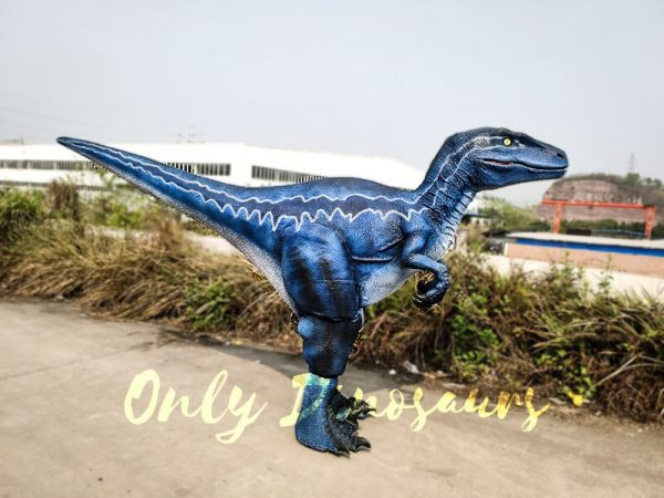Jurassic Park Velociraptor Blue Costume in Reality1 1