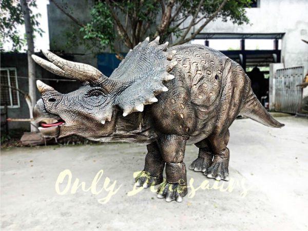 Jurassice World Realistic Triceratops Costume1 1