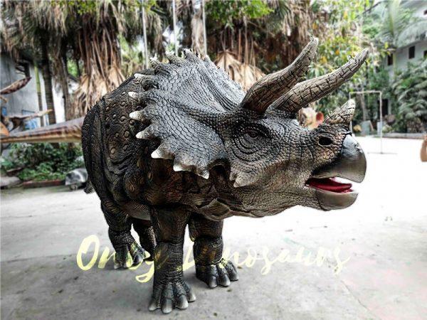 Jurassice World Realistic Triceratops Costume2 1