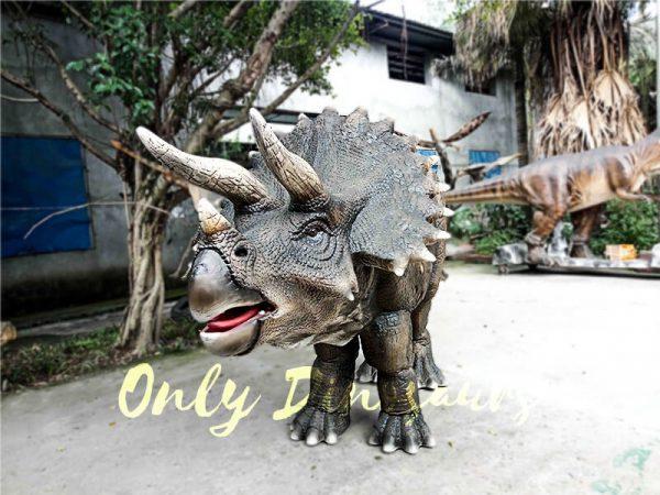 Jurassice World Realistic Triceratops Costume4 1