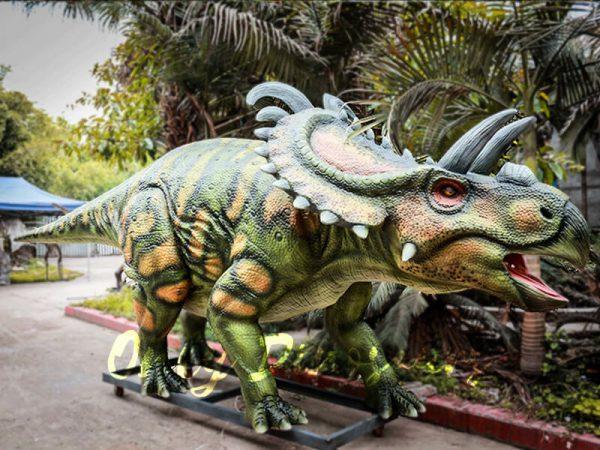 Life Size Artificial Dinosaur Animatronic Albertaceratops4 1