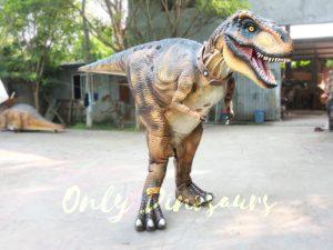 Life Size T Rex Costume