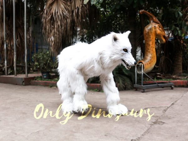 Life Size White Wolf Costume for Show5