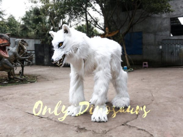 Life Size White Wolf Costume for Show9