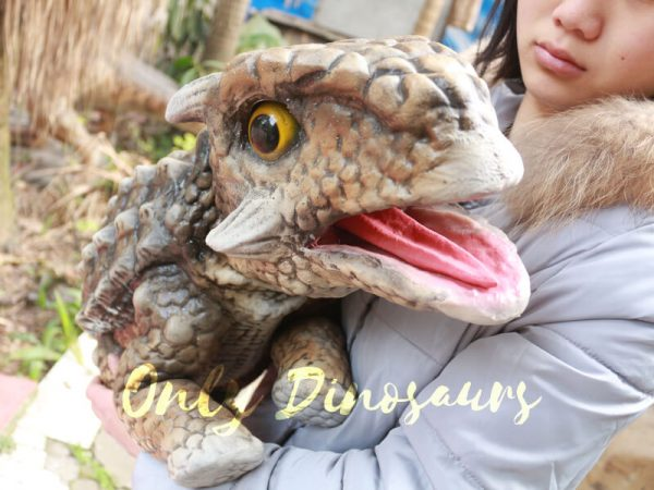 Lifelike-Ankylosaurus-Dinosaur-Puppet-Baby-Puppet