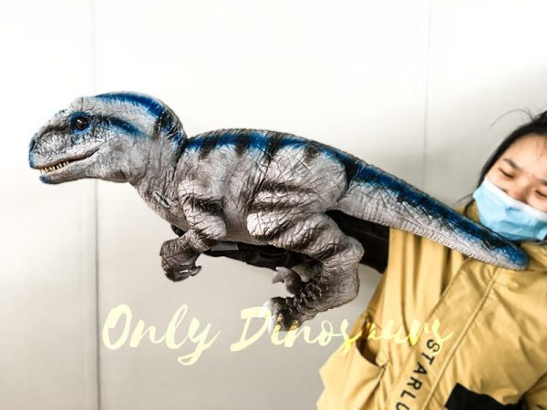 Lifelike Baby Velociraptor Puppet with Gloved Hand1 1