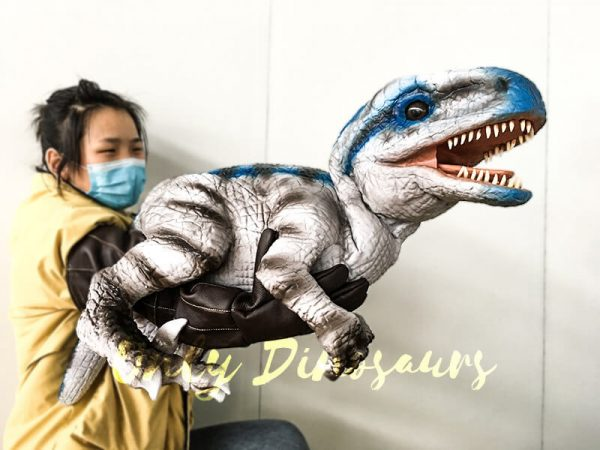 Lifelike Baby Velociraptor Puppet with Gloved Hand2 1