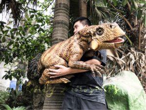 Lifelike Psittacosaurus Puppet for School Education