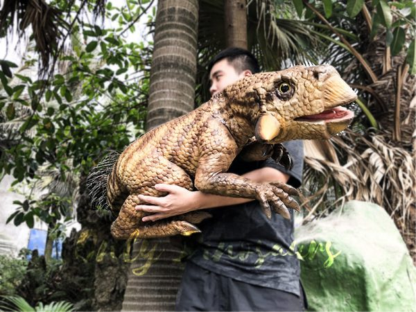 Lifelike Psittacosaurus Puppet for School Education1 feature 1