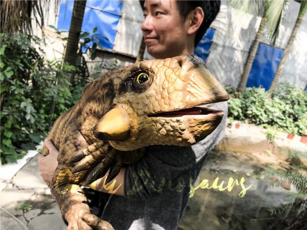 Lifelike Psittacosaurus Puppet for School Education2 1