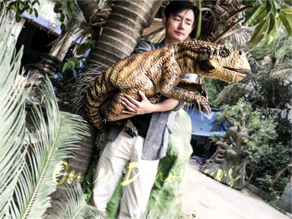 Lifelike Psittacosaurus Puppet for School Education3 1