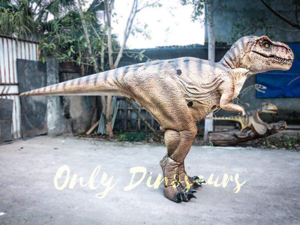 Lifelike T rex Costume for Park1 1