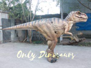 Lifelike T-rex Costume for Park