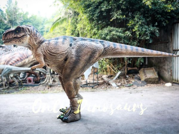 Lifelike T rex Costume for Park2 1