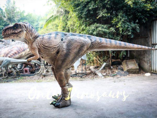 Lifelike T rex Costume for Park2 1