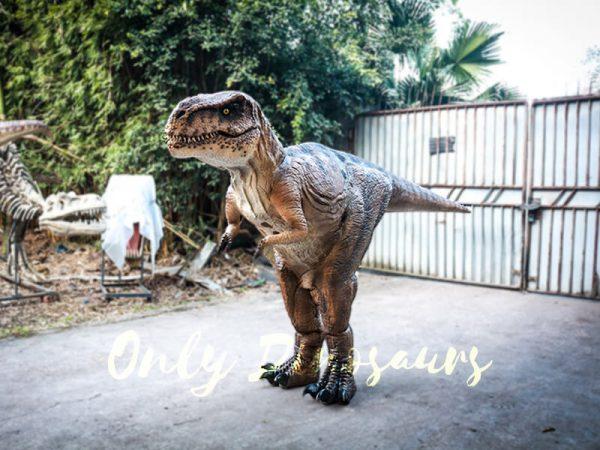 Lifelike T rex Costume for Park3 1