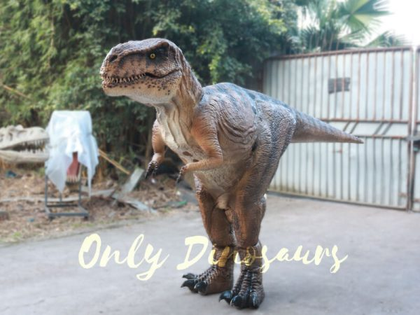 Lifelike-T-rex-Costume-for-Park3-2