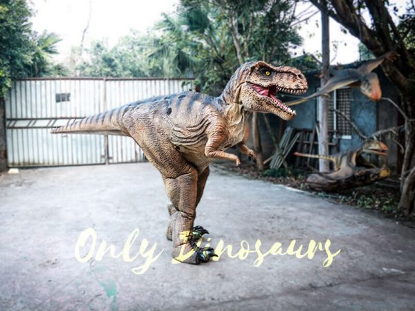 Lifelike T rex Costume for Park4 1