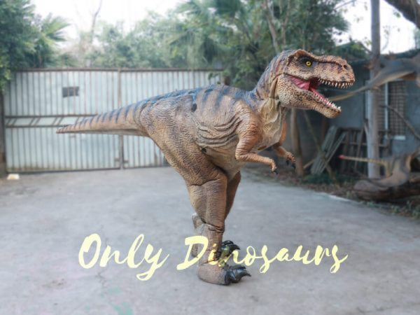 Lifelike-T-rex-Costume-for-Park4-2