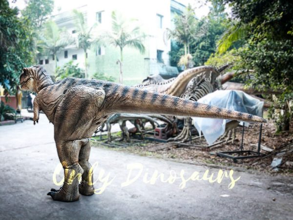 Lifelike T rex Costume for Park7 1