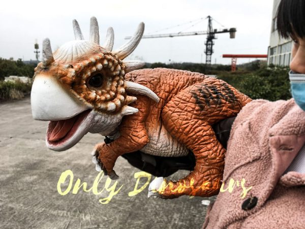 Lovely Baby Stygimoloch Puppet For Educational Purposes4 1