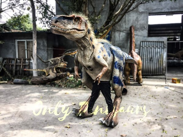 Movie Quality Costumes of Tyrannosaurus Rex with Feathers1 1