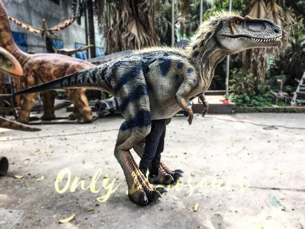 Movie Quality Costumes of Tyrannosaurus Rex with Feathers2 1