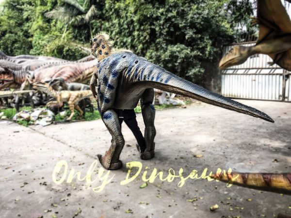 Movie Quality Costumes of Tyrannosaurus Rex with Feathers3 1
