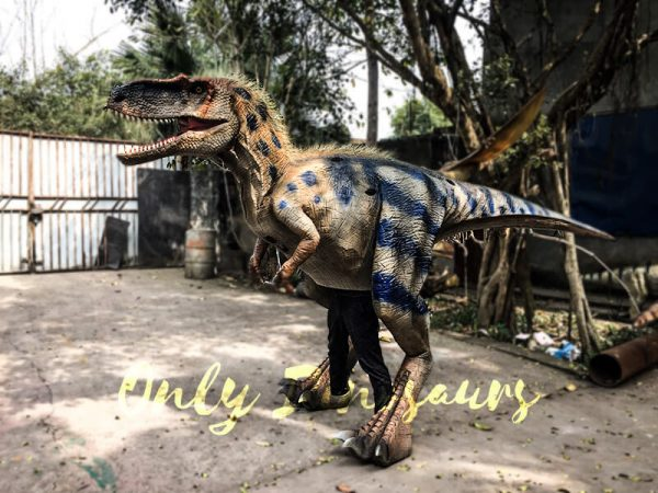 Movie Quality Costumes of Tyrannosaurus Rex with Feathers5 1