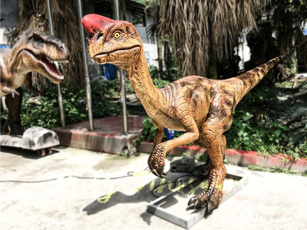 Museum Dinosaur Figure Animatronic Oviraptor1 1