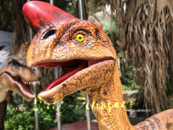 Museum-Dinosaur-Figure-Animatronic-Oviraptor4-2