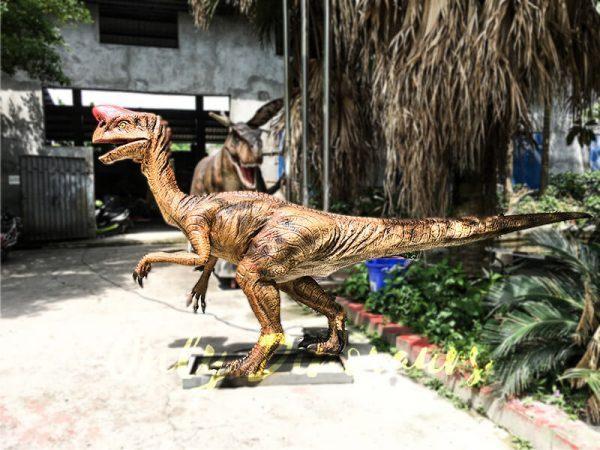 Museum Dinosaur Figure Animatronic Oviraptor5 1
