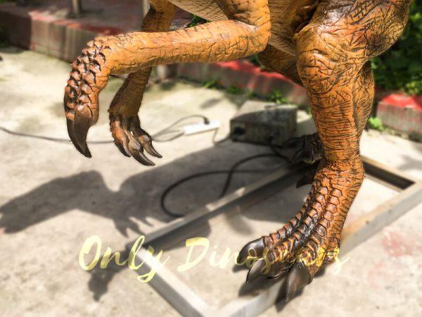 Museum-Dinosaur-Figure-Animatronic-Oviraptor6-2