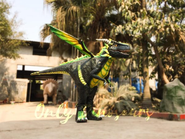 Professional-Dragon-Costume-For-TV-Show3-2