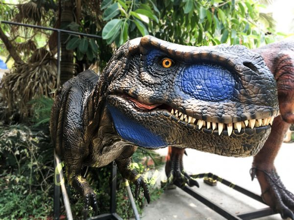 Realistic Animatronic T Rex Head for Building Decoration2
