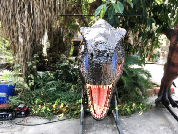 Realistic Animatronic T Rex Head for Building Decoration3